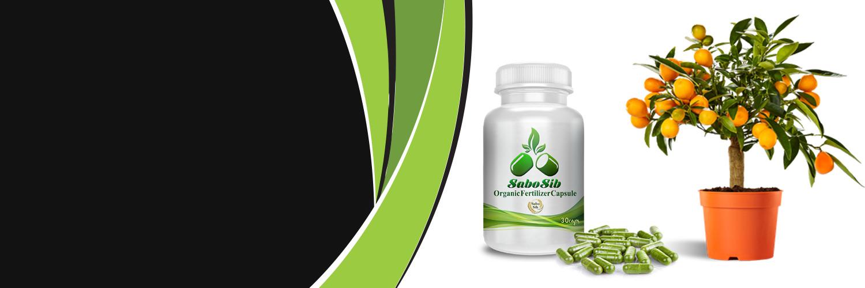 organic fertilizer capsule-قرص کود شرکت سبوسیب